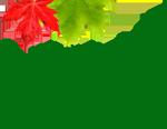 Neera Natural Canada